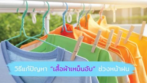 แก้ปัญหาเสื้อผ้าเหม็นอับกวนใจ ให้ผ้าหอมสะอาดทุกครั้งที่สวมใส่