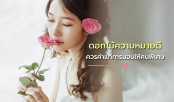 ความหมายของดอกไม้แต่ละชนิดที่ควรค่าแก่การมอบให้คนพิเศษ