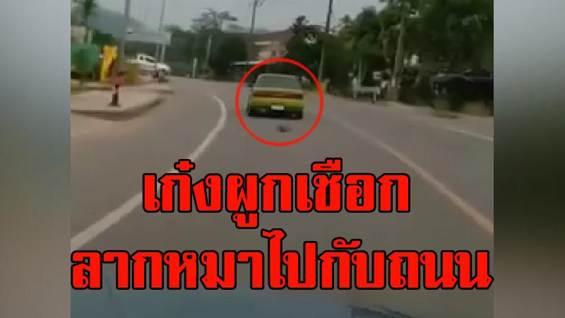 วิจารณ์ยับ! เก๋งผูกเชือกลากหมาไปกับถนน คนขับอ้างจะเอาไปฝัง