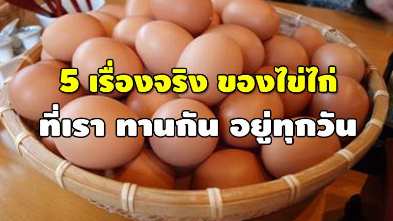 5 เรื่องจริง ของไข่ไก่ ที่เรา ทานกัน อยู่ทุกวัน